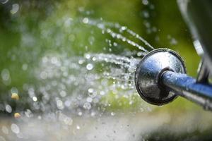 Wasserstrahlen aus einer Gießkanne foto