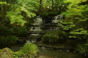 japanischer Wasserfall foto