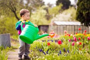 süßer kleiner Junge, der Blumen gießt