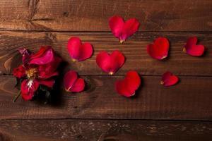 Valentinstag Thema foto