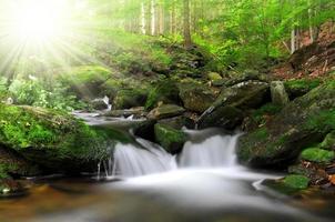 Wasserfall am weißen Bach foto