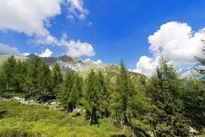 Nationalpark von Adamello Brenta - Italien