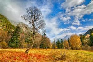 Herbst in Arkhyz foto