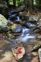 Wasserfall läuft natürlich foto