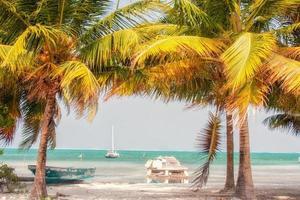 Foto in Belize aufgenommen