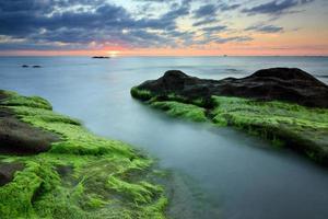 Felsen mit grünem Moos bei Sonnenuntergang in Sabah, Borneo, Malaysia