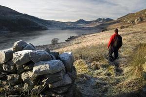 walisischer Wanderer