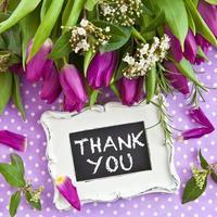 frische lila Tulpen foto