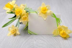 leere Papierkarte mit Band und Narzissenblüten