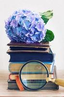 Stapel alter Bücher mit Blumen
