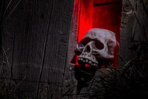 Halloween Schädel und Dekorationen
