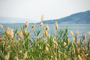 Galiläisches Meer
