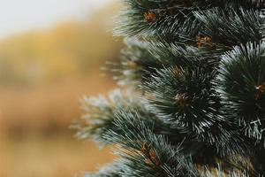 Detail des Weihnachtsbaumes