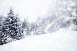 Weihnachtshintergrund mit verschneiten Tannenbäumen