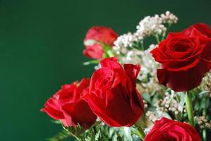 Strauß roter Rosen # 1