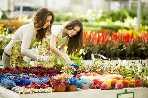 junge Frauen im Blumengarten foto