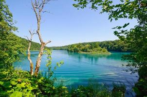 Nationalpark Plitvicer Seen, Kroatien foto