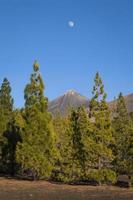 Mond über dem Berg Teide foto