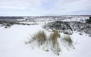 Schnee über den North York Mooren, Yorkshire, Großbritannien.