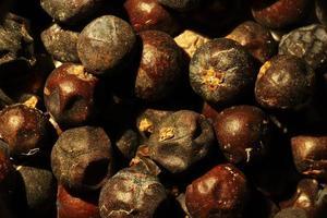 Fotografie des Wacholderbeerenmusters für Nahrungsmittelhintergrund