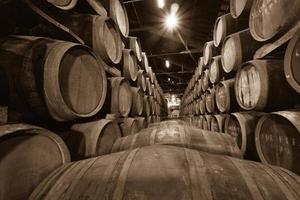 Fässer im Weinkeller foto