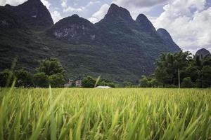 Yangshuo Guilin