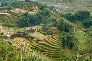 dörfliche Landwirtschaft