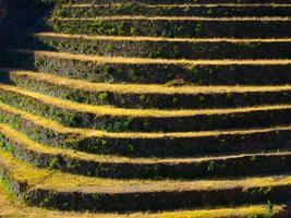 terrassierte Felder foto