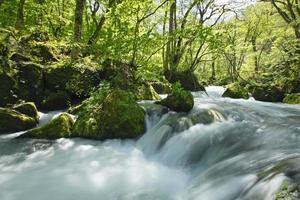 Oirase Stream im Frühjahr foto