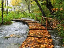 Plitvice Gehweg im Herbst foto