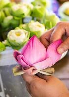 Frau faltet Blütenblatt rosa Lotus für beten Buddha in Thai