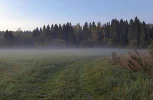 Herbstmorgen foto