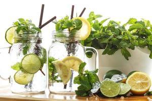 Limette Zitronen Soda Minze Rosmarin frisches Getränk Sommer