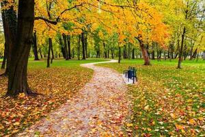 Herbstpark foto