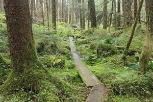 juneau alaska - stadt und landschaften foto