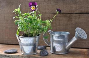 Mini-Set rustikalen Garten