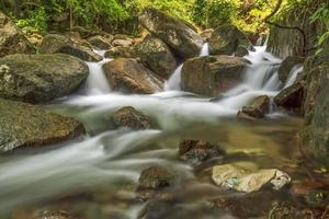 die Schönheit der Natur foto