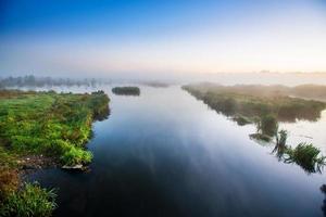 Sumpfgebiet foto