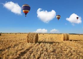Drei bunte Luftballons fliegen über das Feld