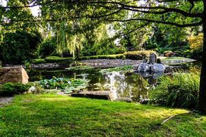 Naturpark in Breslau. foto