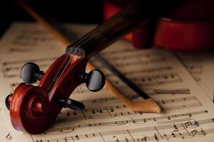 Violine foto