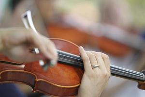 Violinist foto