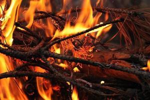 Flammen des Feuers foto