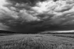vor dem Sturm foto
