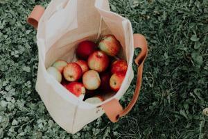 Beutel voller Äpfel