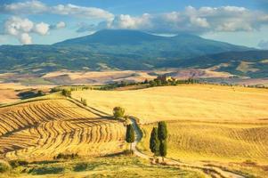 der klassische Blick auf toskanische Felder rund um Pienza, Italien