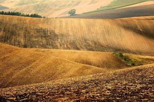 Toskana - Landschaftspanorama, Hügel und Wiese, Toskana - Italien