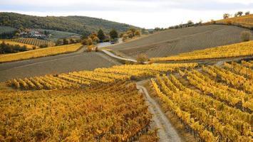 Herbstlaub in Italien