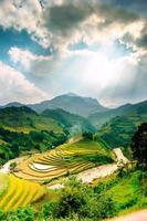 Reisfelder auf Terrassen von Mu Cang Chai foto
