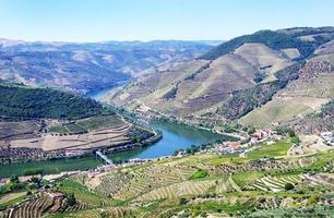 Blick aus dem Douro-Tal, vom Casal de Loivos